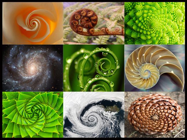 Spiral-Compilation.jpg
