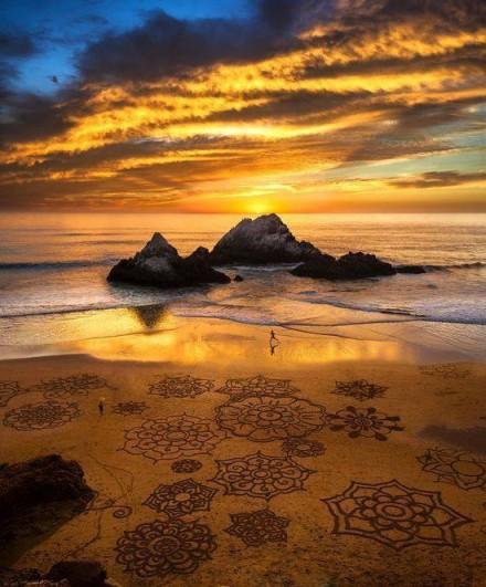 Symbols in Nature: Nature in Symbol