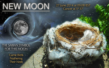 New Moon in Cancer on 27 June 2014